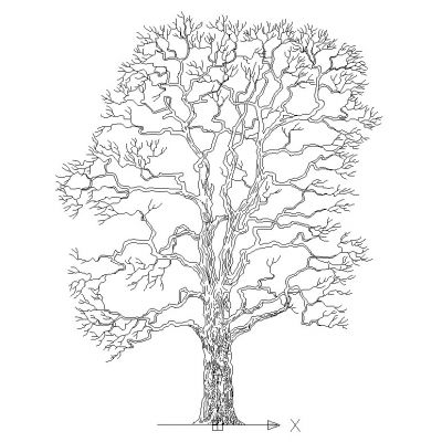 Extrêmement Arbres et Plantes dwg | BlocsCad.com - Part 4 QM91