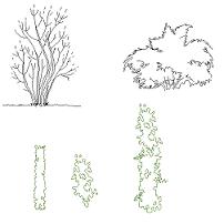 Arbres Et Plantes Dwg Blocscad Com Part 3