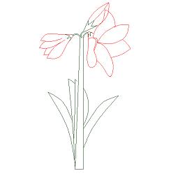 Bloc cad de élévation de fleur en dwg