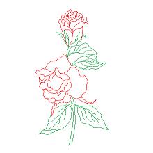 Bloc cad de Roses, fleurs en dwg