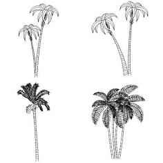 Bloc cad de Palmiers en dwg